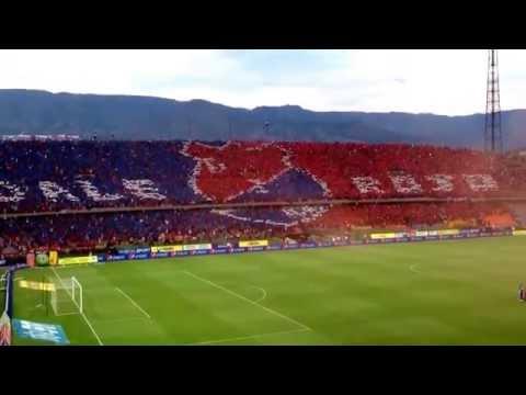 Video - La hinchada mas linda del mundo, Independiente Medellín Vs Tolima, Salida Monumental - Rexixtenxia Norte - Independiente Medellín - Colombia - América del Sur