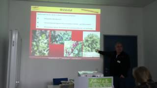 #795 Gesundes Wildobst - Easy Gardening Teil 34 von 35