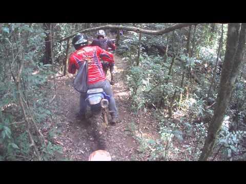 Skolrregados no Barro - Trilha mandirituba 02/03/14 - Mata Verde 04