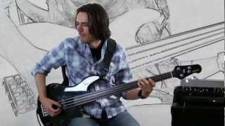 Gotye * Somebody That I Used To Know * Bass Cover