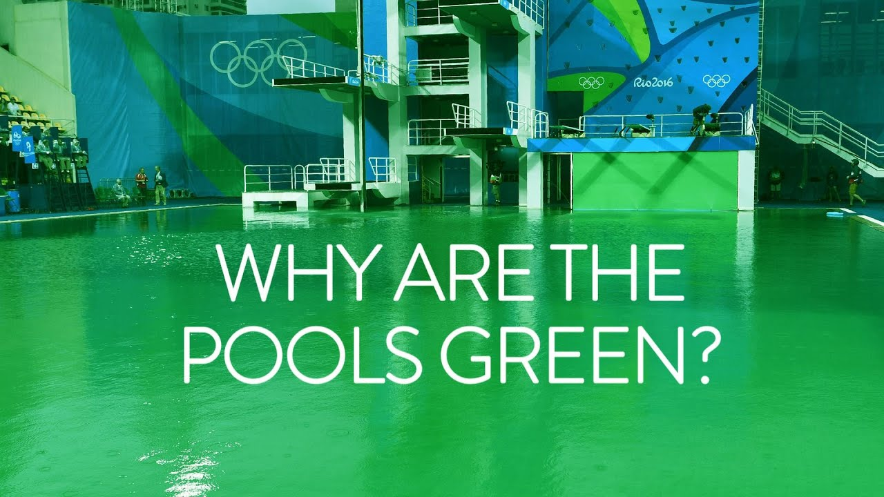 Why are the Olympic diving pools green? Olympic Games Rio 2016 – BBC Sport
