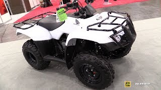 8. 2019 Honda Recon 250 Recreational ATV - Walkaround - 2018 AIMExpo Las Vegas