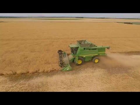EU-Studie: Im Süden der EU künftig keine Landwirtschaft mehr?