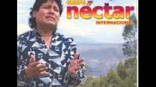 El Grupo Nectar marchate