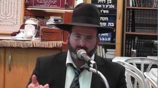 הרב יצחק לוי – הלכות פסח (חלק ב)