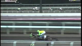RACE 10 SHINING GEE 03/01/2014