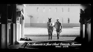 Ariel Camacho Y Los Plebes Del Rancho - Te Metiste