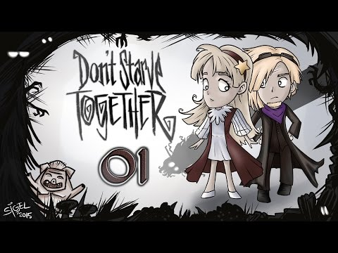 Don't starve together - 01 - Die Nacht fällt