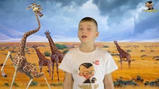 В этом видео вы увидите зачем верблюду горб, слону хобот, а жирафу длинная шеяПодписывайтесь на мой канал https://www.youtube.com/channel/UCxTafoqXMmEFmIA6TfHTBswПрисоединиться к ПАРТНЕРСКОЙ ПРОГРАММЕ AIR  http://join.air.io/madMAXКатегория     ОбразованиеЛицензия     Стандартная лицензия YouTube