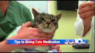 Pet Connection Extra - Giving Cats Pills