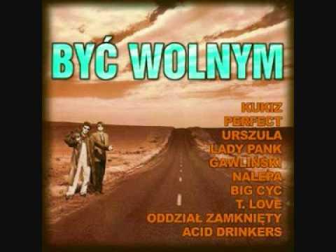 Tekst piosenki Wilki - Z dzikiej ziemi po polsku