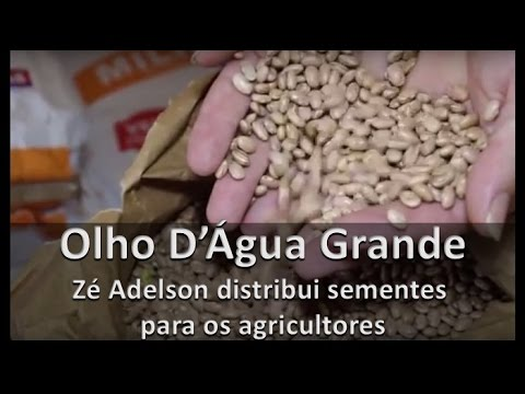 Olho D'Água Grande: Zé Adelson distribui sementes para os agricultores.