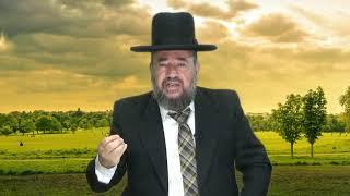 פרשת נח – מה לא נח אצל נח