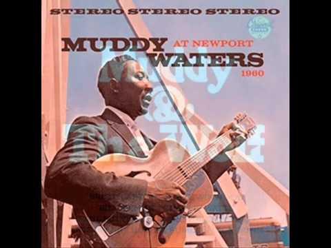 Tekst piosenki Muddy Waters - Goodby Newport Blues po polsku