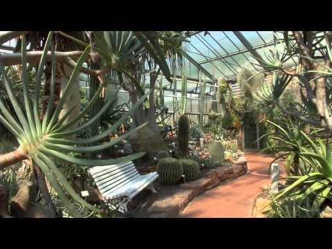 Botanische Gärten: Marburg (Hessen) - Neuer Botanis ...