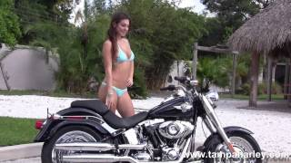 10. New 2013 Harley Davidson FLSTF Fatboy Motorcycle for sale Price specs