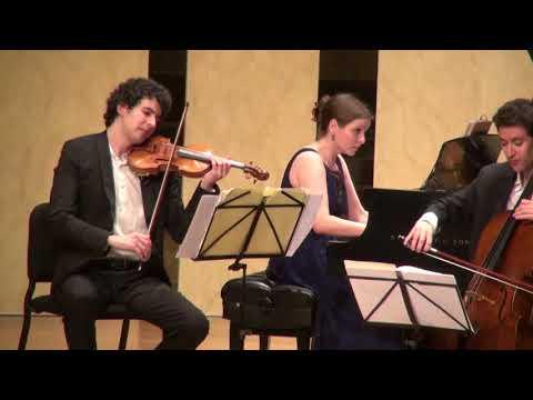See video Liszt Hungarian Rhapsody