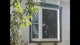 Belleville (KS) United States  city pictures gallery : New Windows in Belleville, KS