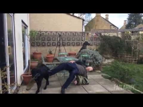 Best Of Fails 2015 Part 2 (Best Fails/Wins of the year!)