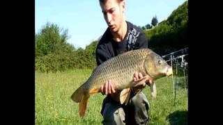 Pêche à La Carpe - Test Des Graines En Barrage