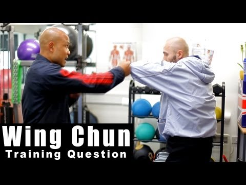 wing chun techniques – how to deal with the chain punch Q14