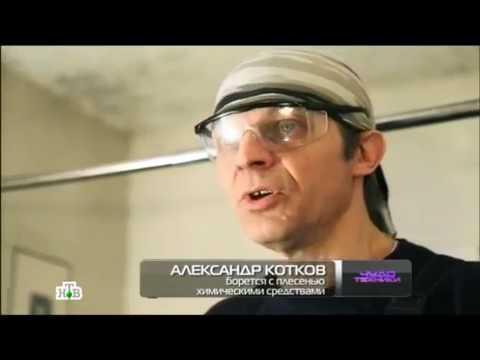 Домвент в программе Чудо-техники на НТВ, борьба с плесенью