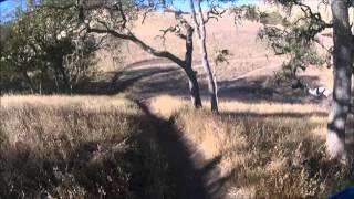 10. Fenceline Trail on a TW200, 11-14-'12