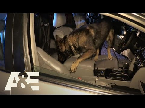 Live PD: Badass Car (Season 2) | A&E