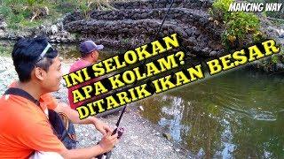 Video Mancing Di Selokan Ini Dapat Ikan Besar Banyak Banget MP3, 3GP, MP4, WEBM, AVI, FLV Juli 2019