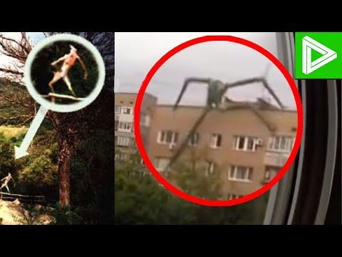 10 Mysterious Creatures Caught On Camera