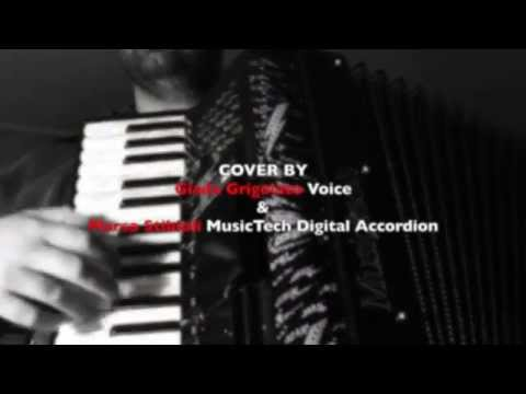 Accordion Cover by Marco Stibioli