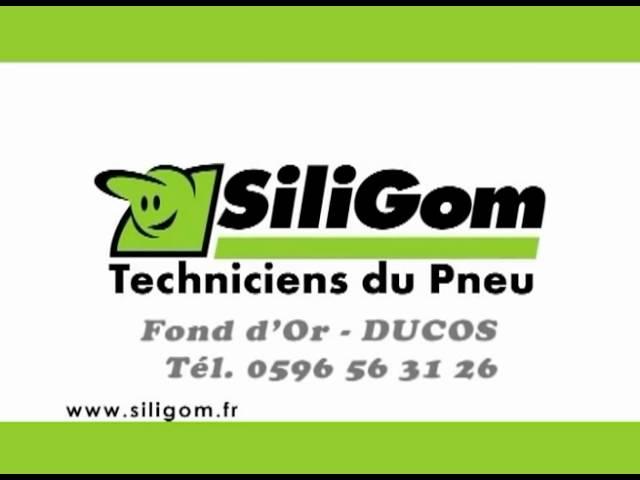 Siligom