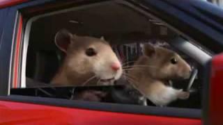 KIa Soul Hamster Commercial
