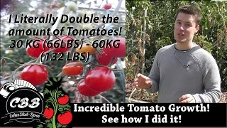The tag isn't click bait at all, compaired to last year, I've doubled the amount of tomatoes I've produced in my system, with the same amount of fish, feed & space. Click the video to learn how. Check out this link for more information on nutrient profiles for Tomatoes. https://edis.ifas.ufl.edu/pdffiles/CV/CV21600.pdf