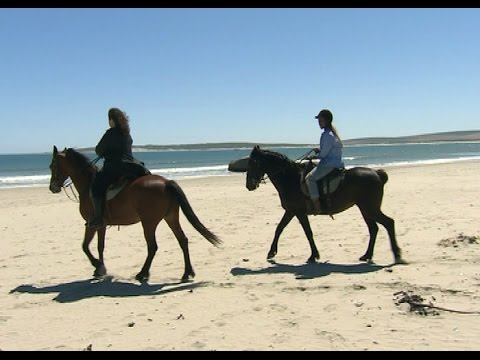 Top Billing explores Paternoster
