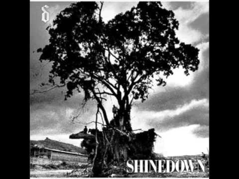 Tekst piosenki Shinedown - Soon Forgotten po polsku