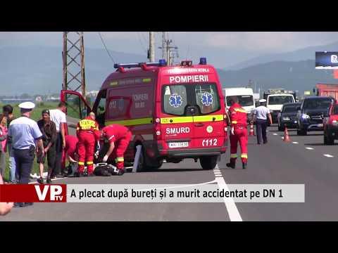 A plecat după bureți și a murit accidentat pe DN 1