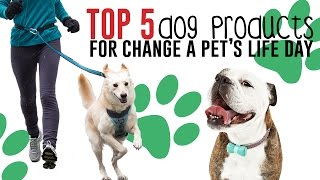 Top 5 Dog Products For Change A Pet's Life Day