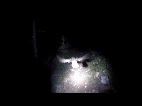 Prescott Mountain Biking -  Nearly Crashed into an Owl on Night Ride