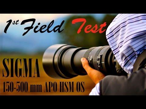 Sigma 150-500 mm APO DG HSM OS video photo field test