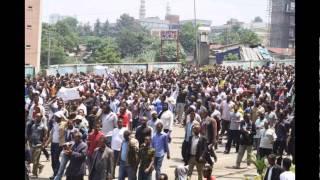 ECADF Ethiopian News Videos
