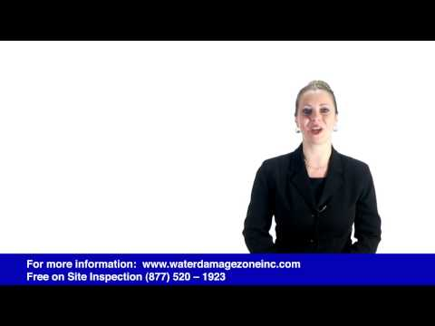 Water Damage Zone and Restoration, Inc 877 520 1923