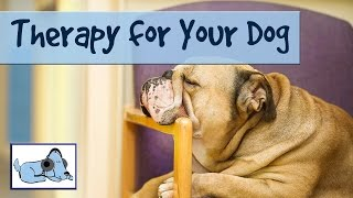 Dog Acoustics - Therapy For Your Dog  - Music Therapy