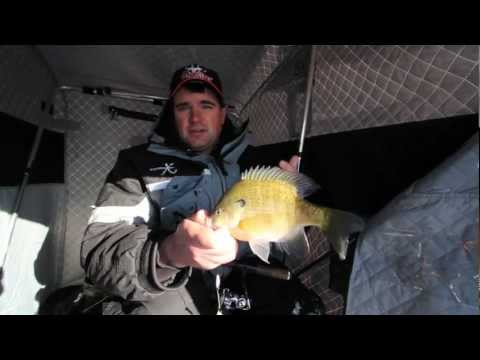 First Ice Bluegill Strategy