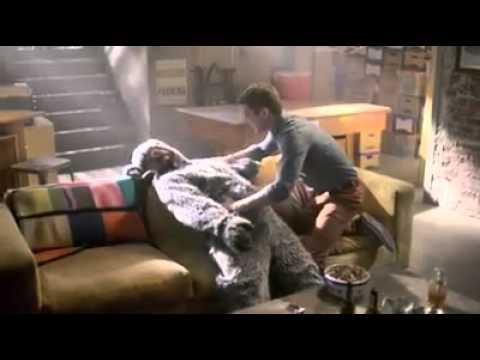 Wilfred Last 2 Episodes Promo