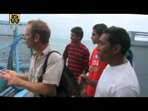 pesca barco mar