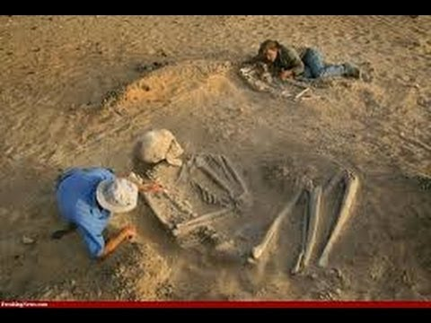 The mystery of giant humans of our earth past