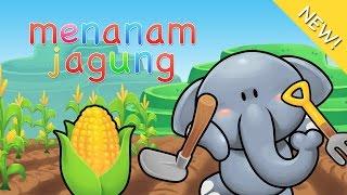 Download lagu Lagu Anak Menanam Jagung Mp3