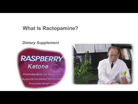 What is Ractopamine?