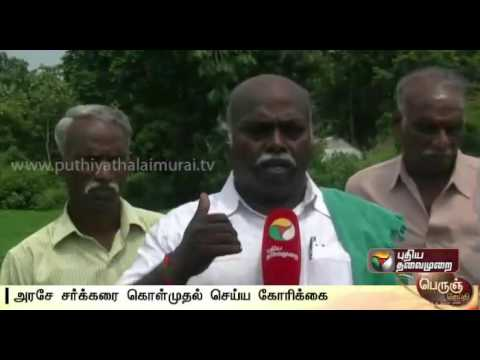 Cultivation-of-sugarcane-reduces-as-there-is-no-profit--Details